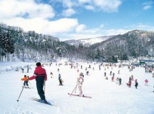 郡上スキー